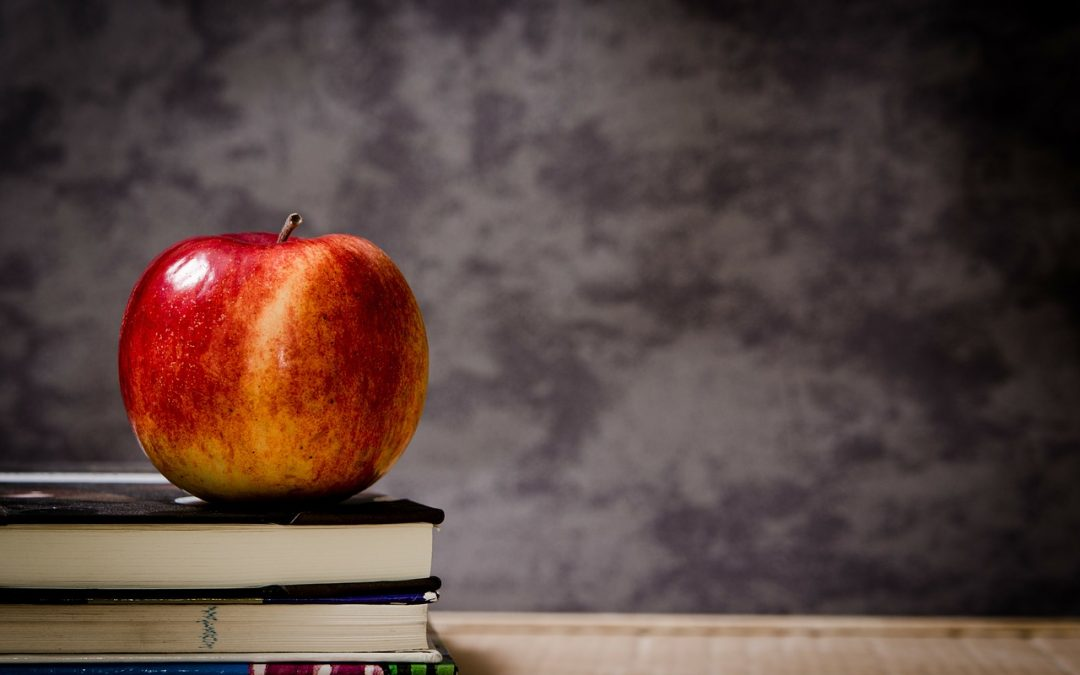 August Newsletter – Gearing up for going back to school